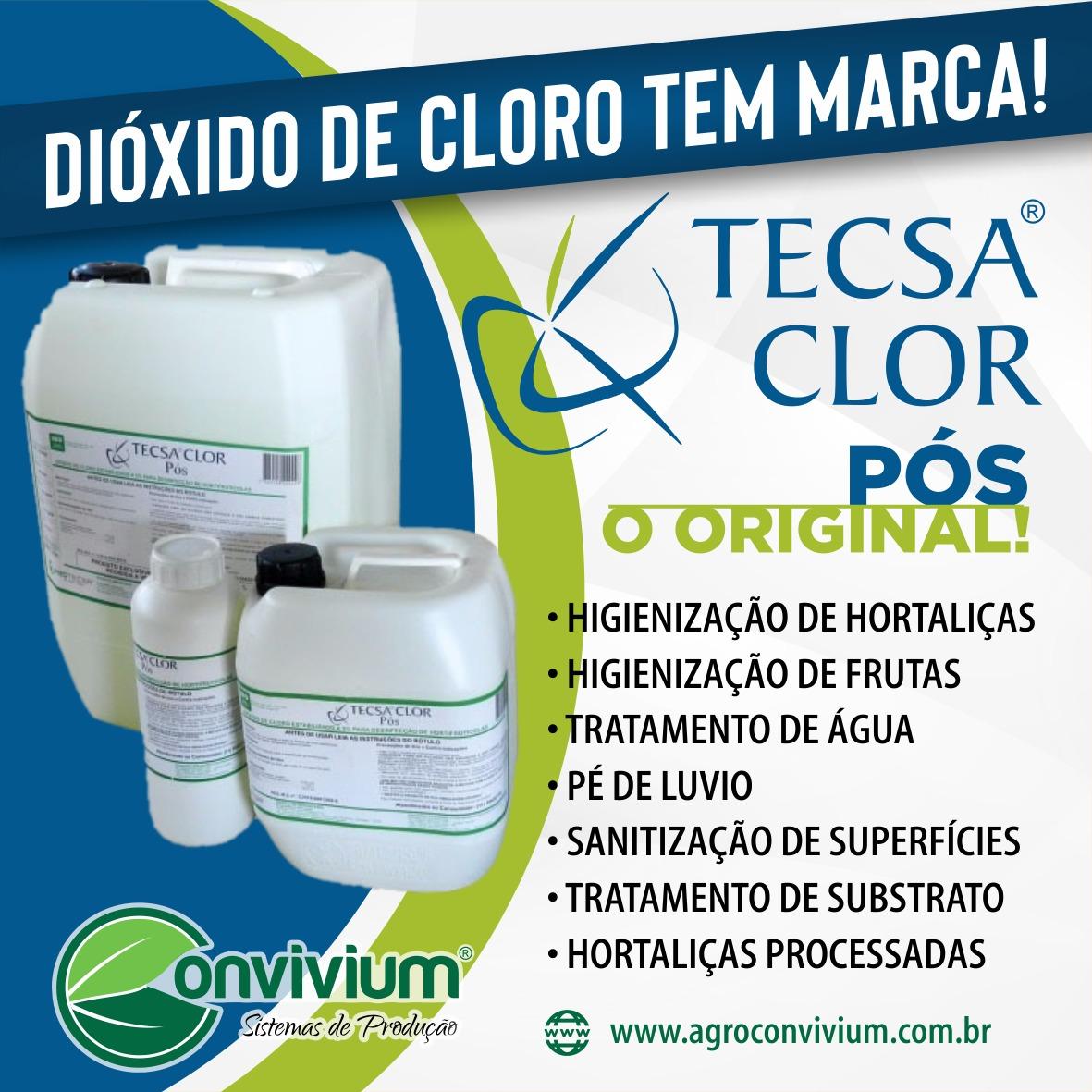 Tecsa Clor Pós - Sanitizante - Virucida,Báctericida e fungicida